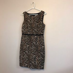 Loft animal cheetah print career office dress